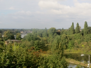 View from the roof towards Thames Ditton